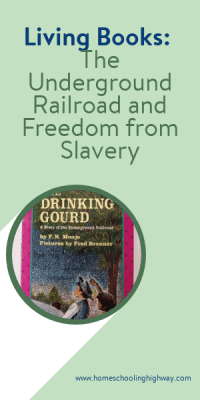 Picture of the book cover for The Drinking Gourd