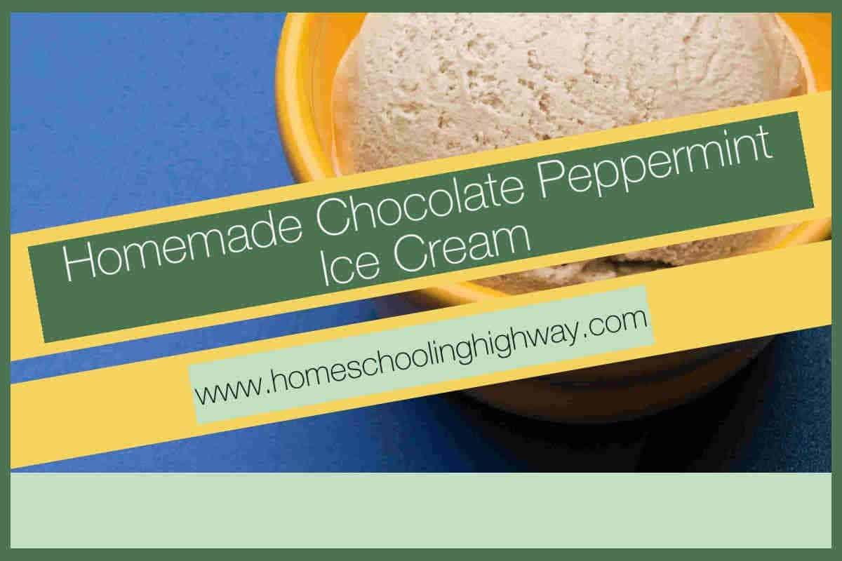 Homemade chocolate peppermint ice cream