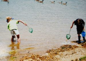 Catch some minnows with your nets at the lake