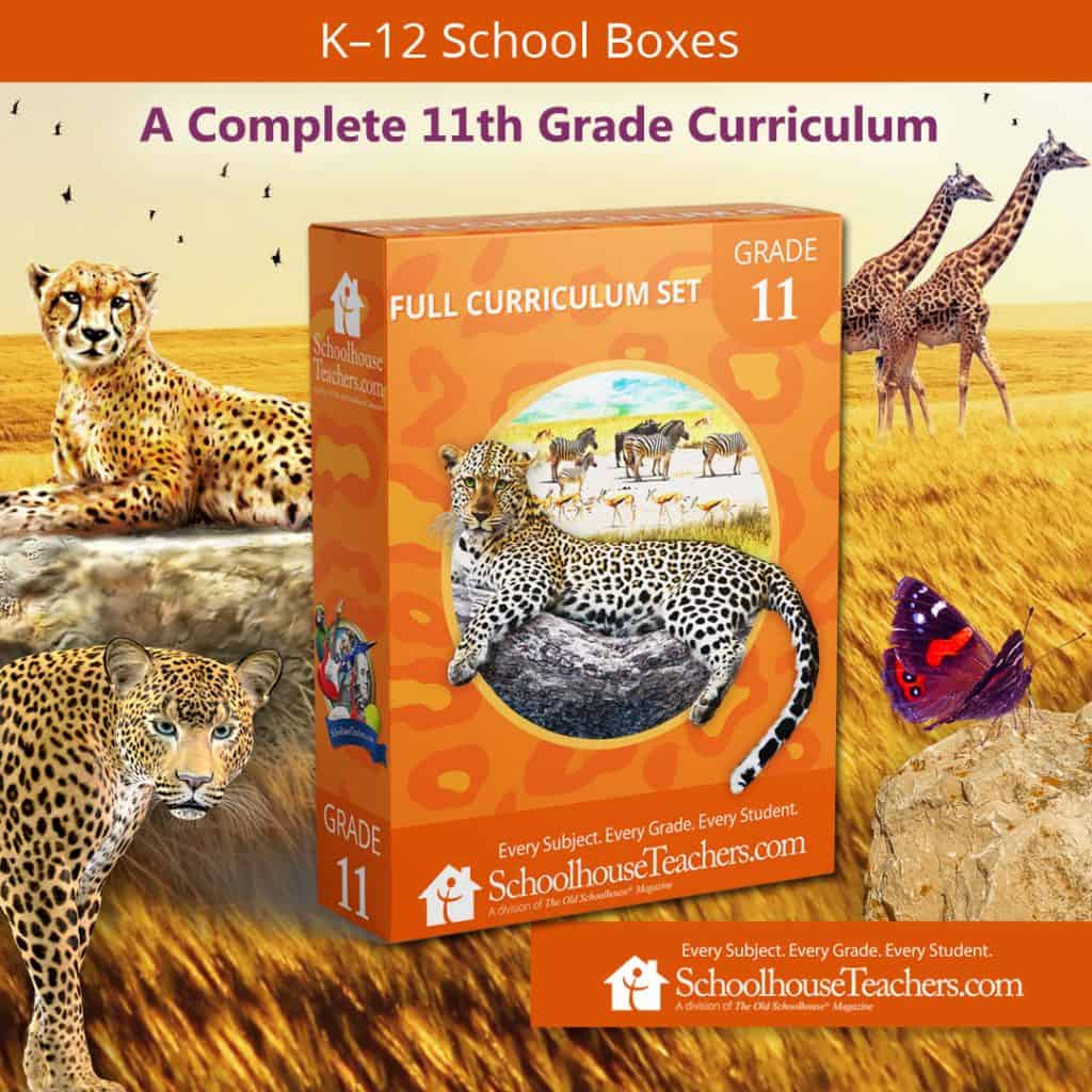 SchoolhouseTeachers.com Eleventh grade curriculum school box cover image