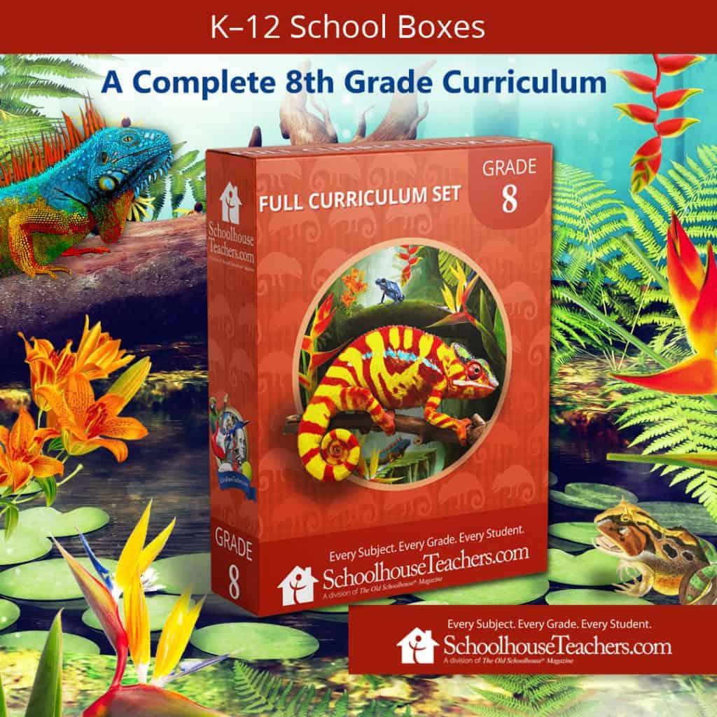 SchoolhouseTeachers.com Eight Grade School box cover image
