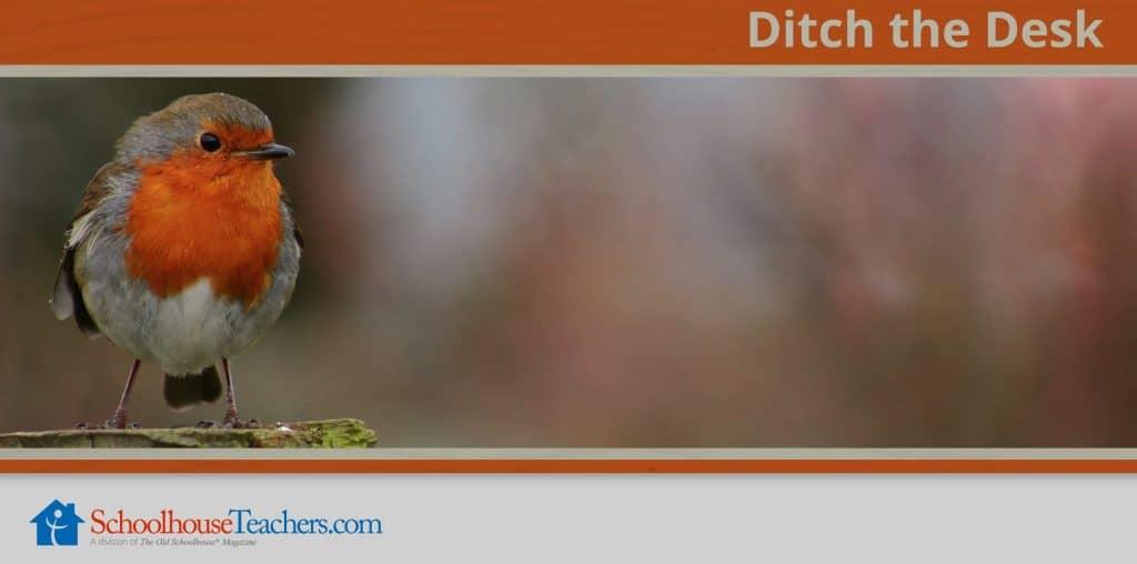 Ditch the Desk. Class from SchoolhouseTeachers.com
