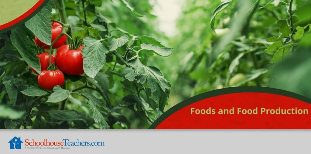Foods and Food Production class from SchoolhouseTeachers.com