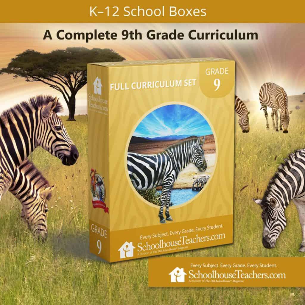 Ninth Grade school box from SchoolhouseTeachers.com